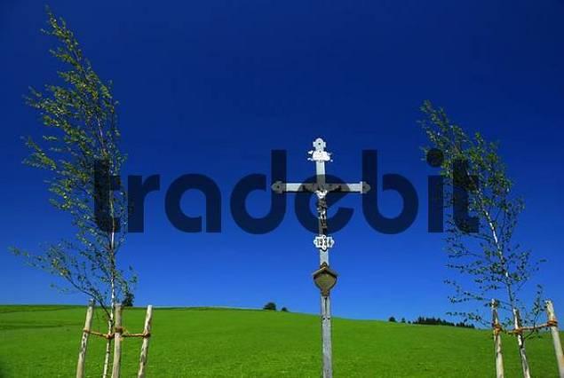 Cross at the roadside, culture landscape, Upper Bavaria, Germany, Europe