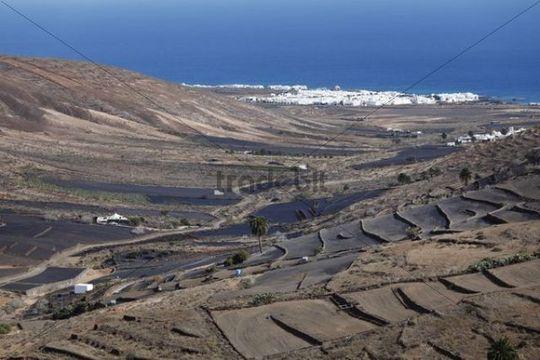 Valle de Temisa, Arrieta, Haria, Lanzarote, Canary Islands, Spain, Europe