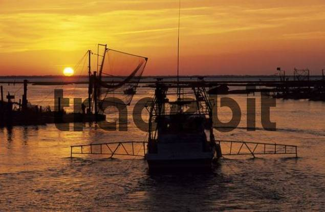 Fishing boats in the harbor of cocodrie in the mississippi for Mississippi fishing charters