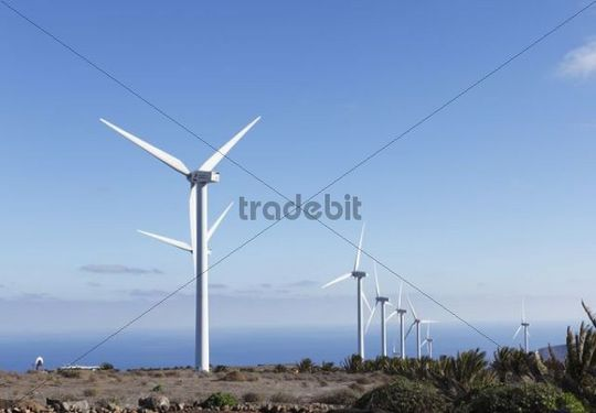 Parque eolico de Lanzarote Wind Farm, Los Valles, Temeje, Canary Islands, Spain, Europe