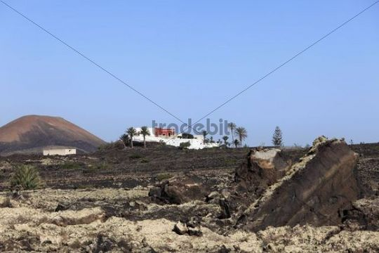 Property in a lava field, La Geria, Lanzarote, Canary Islands, Spain, Europe