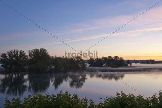 Morning mood at the Untersee lake in Gottlieben on Lake Constance, Canton Thurgau, Switzerland, Europe