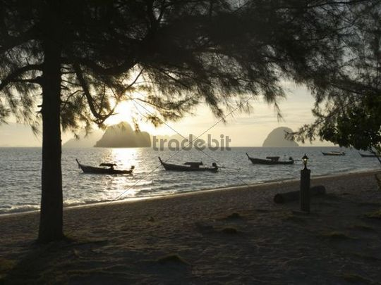 Long tail boats at sunrise with a group of rocks and Ko Muk island in the back, seen from the beach of Ko Hai island, Ko Ngai, Andaman Sea, Satun Province, southern Thailand, Thailand, Asia