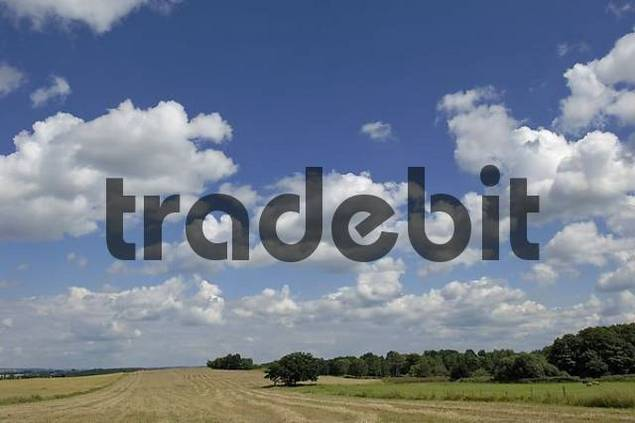 Landscape with blue sky, clouds and harvested corn field, South Bohemia, Czech Republic