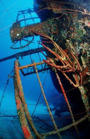 Hilma Hooker wreck, Bonaire, Netherlands Antilles, Caribbean