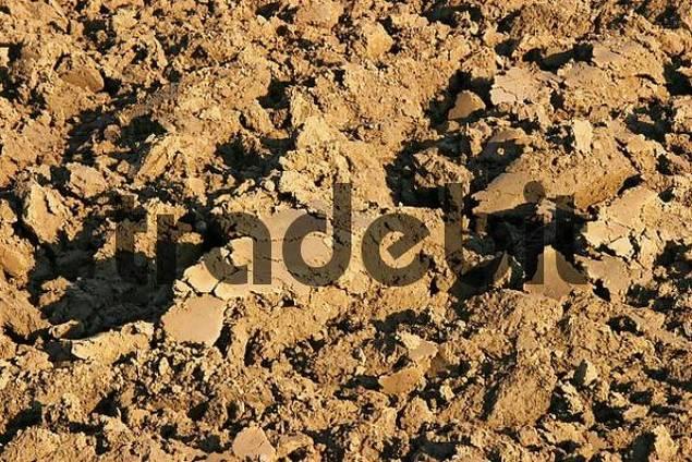 Freshly ploughed fertile soil download nature for Fertile soil 07