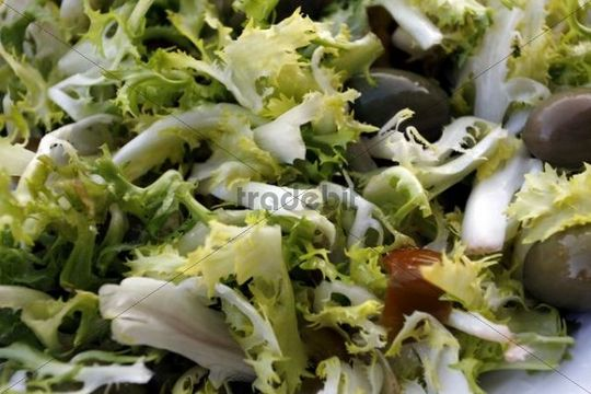 """Insalata di rinforzo"", chicorium envidia salad, traditional Christmas entree in Naples, Campania, Italy"