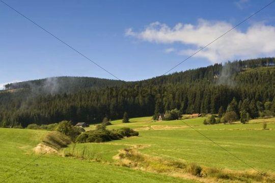 Landscape near Herrenwies in the Black Forest, Baden-Wuerttemberg, Germany, Europe