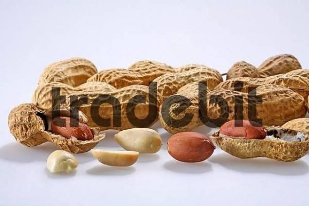 Erdnuesse peanuts