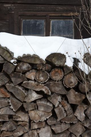 Stack of firewood in front of a hut in the Spreewald forest, Brandenburg, Germany, Europe