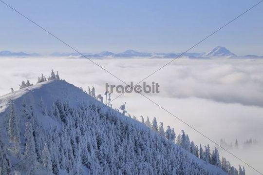 View on Mt. Oetscher from Mt. Unterberg, Lower Austria, Austria, Europe