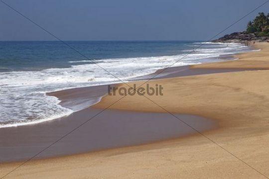 Sandy beach, Somatheeram Beach, Malabarian Coast, Malabar, Kerala, India, Asia