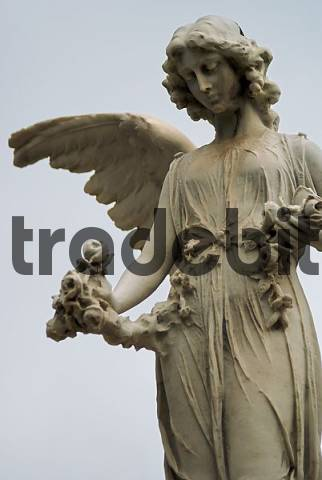 Tomb Angel at the graveyard quotConceioquot in So Paulo, Brazil