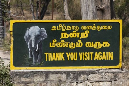Sign, Thank you visit again, bilingual Tamil and English, Mudumalai National Park, Tamil Nadu, Tamilnadu, South India, India, South Asia, Asia