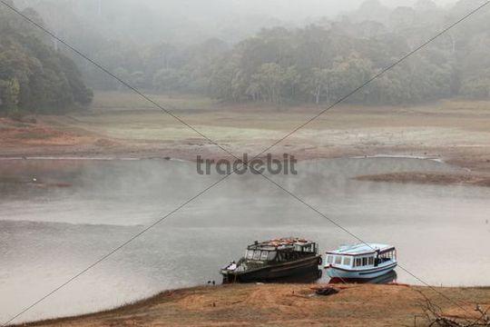 Boat landing place at Thekkady Lake, morning mist, Periyar National Park, Kerala, India, South Asia, Asia