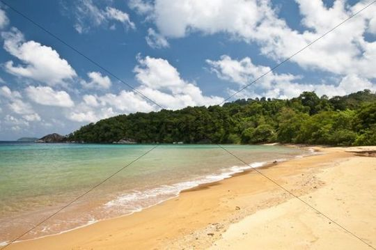 Beach of Monkey Bay, Pulau Tioman Island, Malaysia, Southeast Asia, Asia