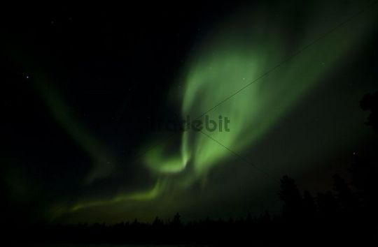Swirling Northern Lights, Polar Lights, Aurora Borealis, green, near Whitehorse, Yukon Territory, Canada