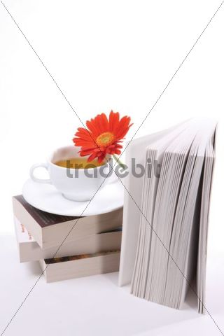 Cup of tea, books, flower