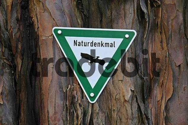 sign nature monument, tree trunk