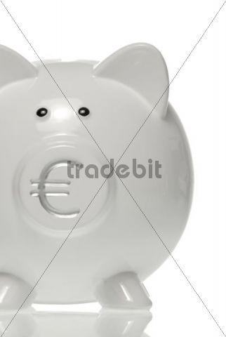 Piggy bank with euro symbol on the nose