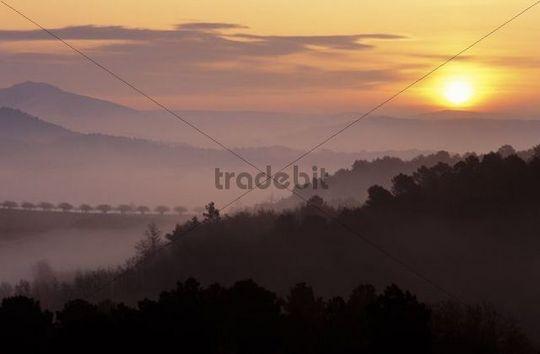 Sunrise, Luberon near Roussillon, Vaucluse, Provence-Alpes-Côte d´Azur, France, Europe