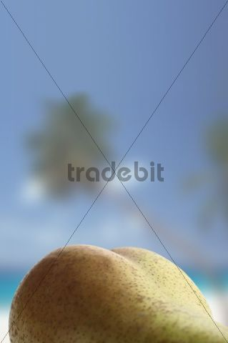 Bottom-shaped pear in front of palm trees on the beach