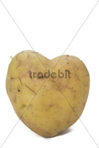 A sprouting heart-shaped potato