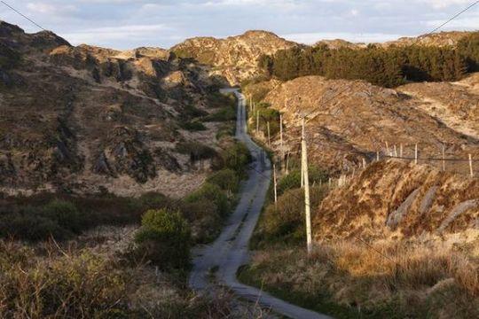 Small country road, Beara Peninsula, Cork, Republic of Ireland, British Isles, Europe
