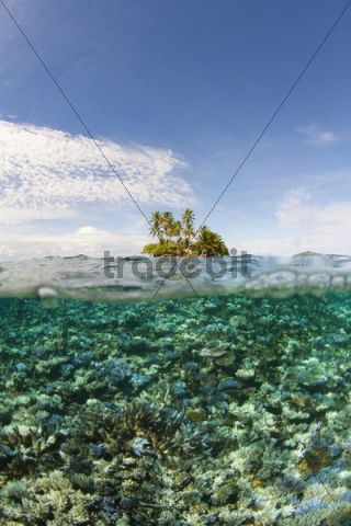 Chuuk, Truk island, Micronesia, Pacific Ocean