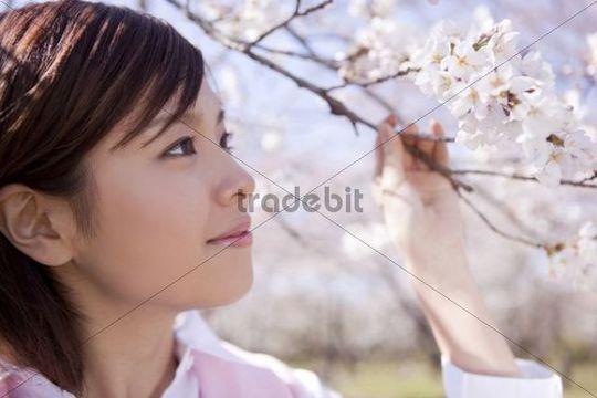 Young woman enjoying cherry blossom