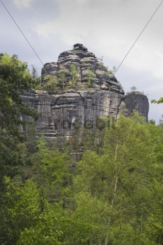 Rock formation on the Goldsteig, Saxon Switzerland, Elbsandsteingebirge Elbe Sandstone Mountains, Saxony, Germany, Europe