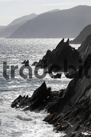 cliffs, Slea Head, Dingle peninsula, Kerry, Ireland
