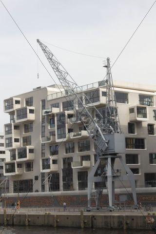 Crane in the Hafencity district, Hamburg, Germany, Europe