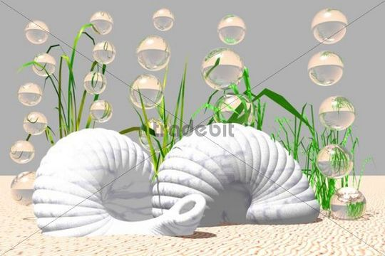 Snail shells on the bottom of the sea, 3D computer graphics