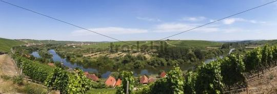 Old Main River, view over the towns of Koehler, Escherndorf, left, and Nordheim am Main, Mainschleife, loop in the Main River, Mainfranken, Lower Franconia, Franconia, Bavaria, Germany, Europe