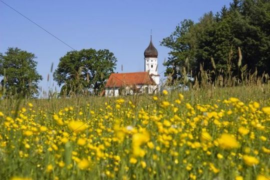 Chapel with blossoming meadow, Hubkapelle Chapel, Penzberg, Bavaria, Germany, Europe
