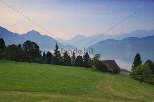 Early morning on Lake Lucerne in Weggis, Canton of Lucerne, Switzerland, Europe