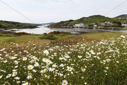 Clifden Bay, Clifden, Connemara, County Galway, Republic of Ireland, Europe