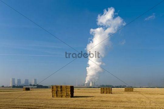 Harvested grain field, in the back the Kraftwerk Neurath power plant, Grevenbroich, North Rhine-Westphalia, Germany, Europe