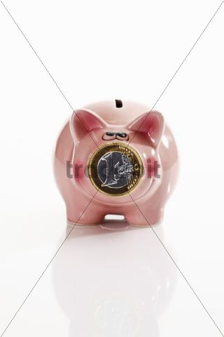 Pink piggy bank with one-euro coin in front of the snout