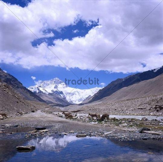 Mountain scenery, Tibet, China, Asia