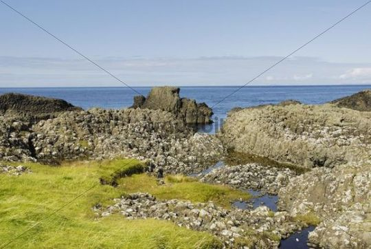Bog pools in weathered basalt blocks at Northern Irish coast at Ballintoy Harbour, County Antrim, Northern Ireland, United Kingdom, Europe