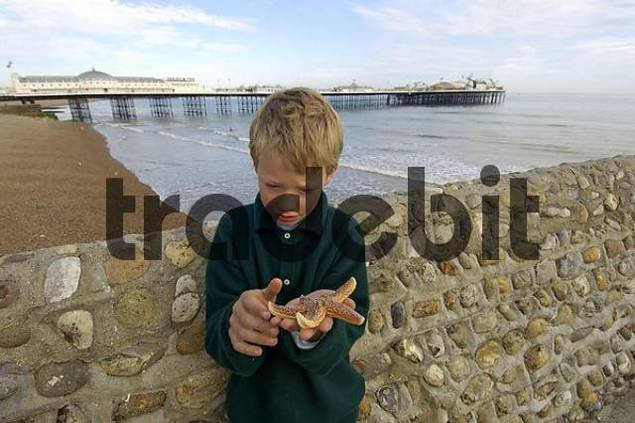 Boy with starfish in front of the Pier Brighton West Sussex England