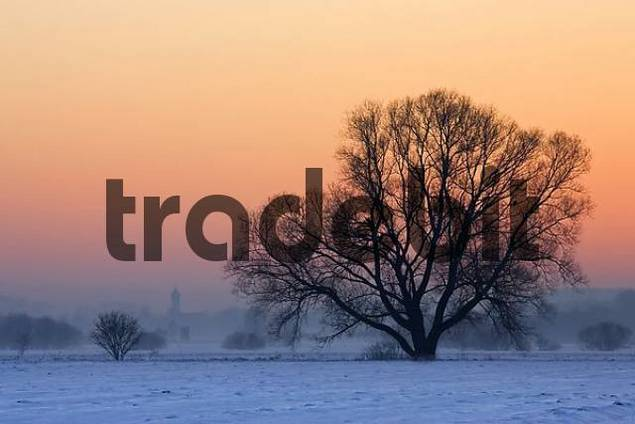 Sunset over the snowy fields with trees and church. Bavaria, Germany