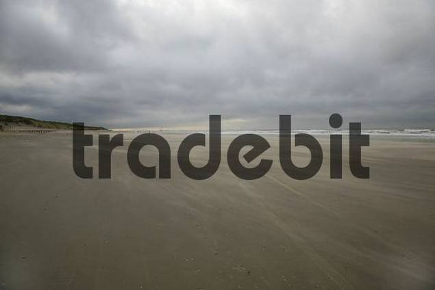 beach of the North Sea near Den Haag, South Holland, Netherlands