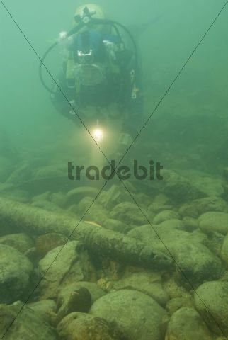 Diver in the Enns river near Kastenreith, Upper Austria, Austria, Europe