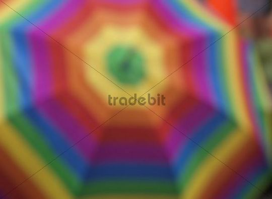 Umbrella with colors of gay pride flag at a pride parade