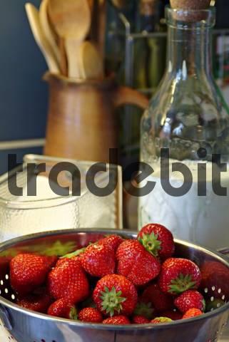 still life with fresh strawberries, sugar and milk