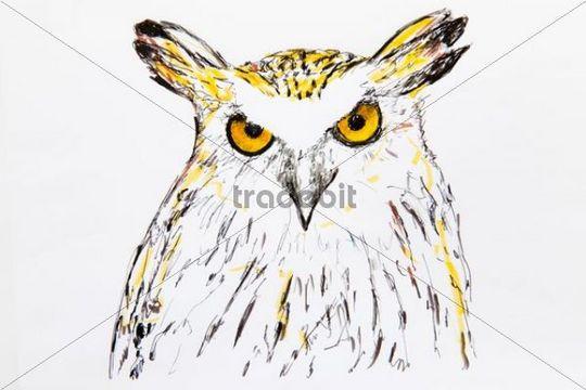 Malay Fish Owl (Bubo ketupu), drawing, artist Gerhard Kraus, Kriftel, Germany, Europe