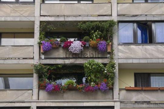 Floral decorations on a balcony, tristesse, Frankfurt, Hesse, Germany, Europe